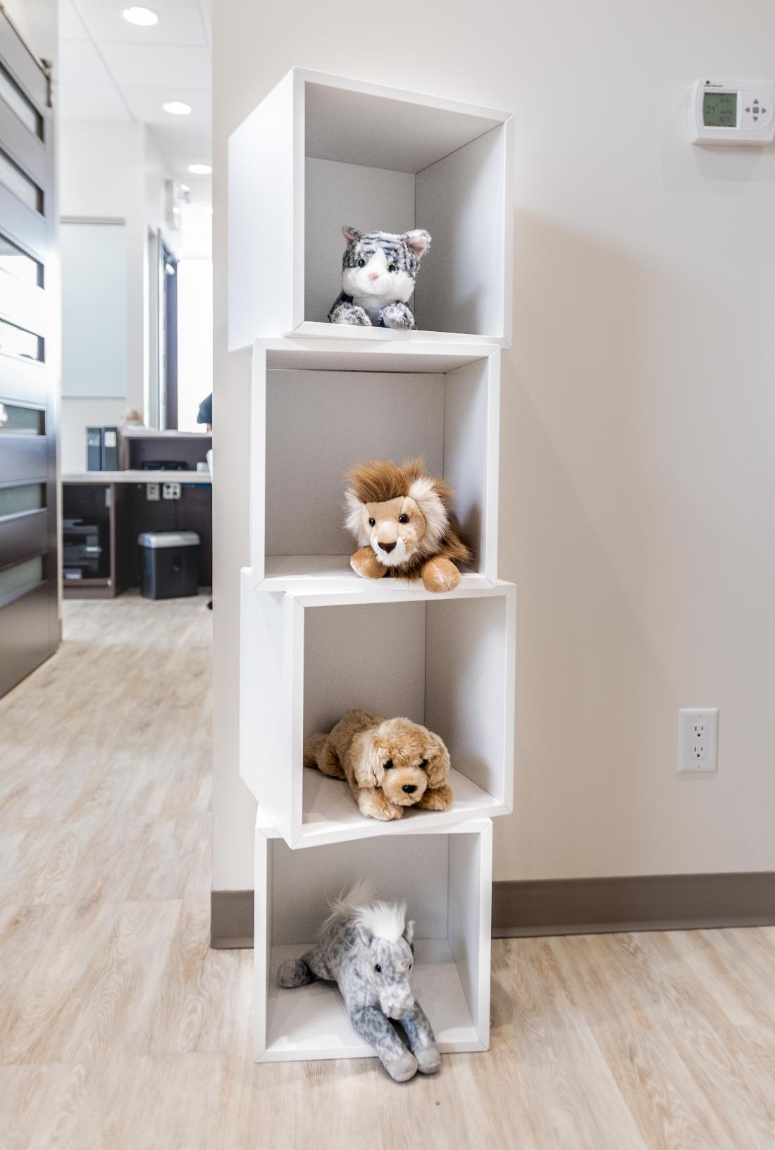 Kids Plush Toys on shelves | Orchards Dental